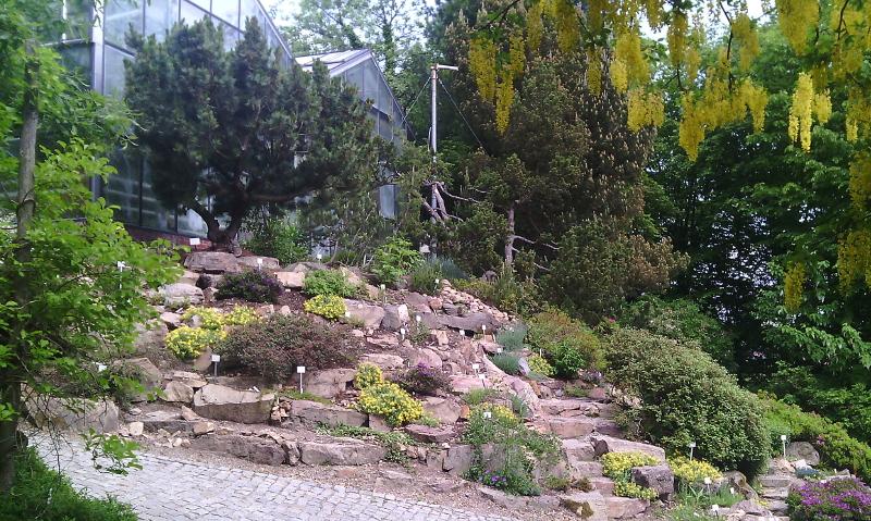 Gartengestaltung kleine g 228 rten for Gartengestaltung chemnitz