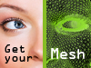 Get your mesh